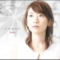 Suara トモシビ(acoustic version)