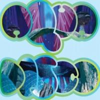 Seahawks Aquadisco (Continuous Version)