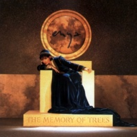 Enya Anywhere Is (Remastered) (Single Edit)