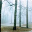 瀬木貴将 SILENCIO・・・南米屈指のピアニスト、ウーゴ・ファトルーソを迎えた静寂のアルバム。