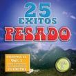 Pesado 25 Exitos Pesados (Vol. 2) (USA)