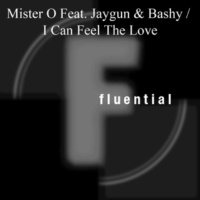 Mister O feat. Paul Desmond I Can Feel The Love [Bobby Blanco & Miki Moto's Vocal Dub]