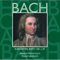 """Gustav Leonhardt Cantata No.134 Ein Herz, das seinen Jesum lebend weiss BWV134 : I Recitative - """"Ein Herz, das seinen Jesum lebend weiss"""" [Counter-Tenor, Tenor]"""