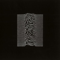 Joy Division Insight (2007 Remastered Version)