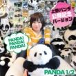 PANDA 1/2 PANDA! PANDA! PANDA! ~上野パンダ公開記念バージョン~