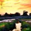 Various Artists Tribute to Jun 3: Modal Eternal