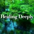 TARO IWASHIRO Healing Deeply・・・深い癒しの音楽