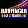 バッドフィンガー ベスト・オブ・バッドフィンガー1994:フィーチャリング・ジョーイ・モーランド