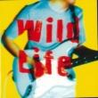 鬼怒無月 Wild Life