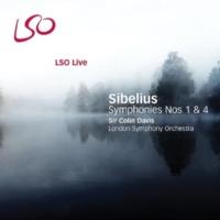 Sir Colin Davis, London Symphony Orchestra Symphony No. 1 (II. Andante, ma non troppo lento)