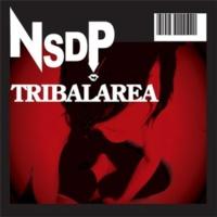 NSDP TRIBALAREA