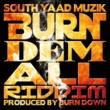 BURN DOWN & Various Artists SOUTH YAAD MUZIK ''BURN DEM ALL RIDDIM''