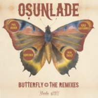 Osunlade Butterfly (Ron Trent's musicandpower Remix)