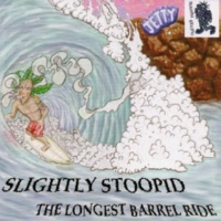 Slightly Stoopid Violence
