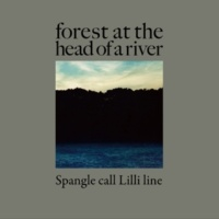 Spangle call Lilli line forest at the head of a river
