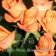 Kyoto Music Box Ensemble いつも何度でも(「千と千尋の神隠し」より) (オルゴール)