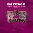 DJ Fudge