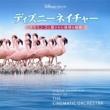 ザ・シネマティック・オーケストラ ディズニーネイチャー/フラミンゴに隠された地球の秘密 オリジナル・サウンドトラック