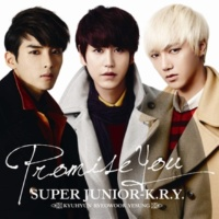 SUPER JUNIOR-K.R.Y. ハナミズキ