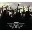 東京スカパラダイスオーケストラ WILD PEACE