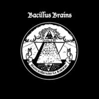 THE BACILLUS BRAINS 暗闇でSHUFFLE