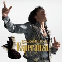 Rockamenco Wild World