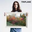 TRIPLANE 君に咲くうた