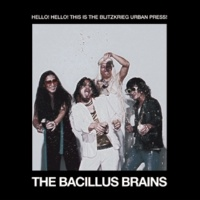 THE BACILLUS BRAINS FREAKOUT LOVERS