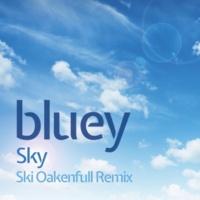 ブルーイ Sky (Album Version)