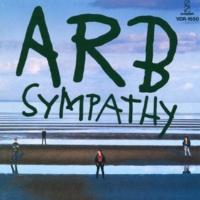 A.R.B. NO EASY ROAD