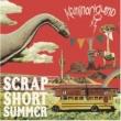 カミナリグモ SCRAP SHORT SUMMER