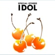 SPECIAL OTHERS IDOL