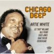 Various Artists Chicago Deep