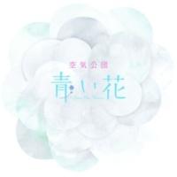 空気公団 青い花