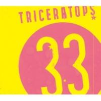 TRICERATOPS 33