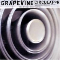 GRAPEVINE B.D.S.