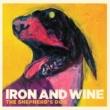 Iron & Wine Flightless Bird, American Mouth (Live)