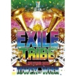 二代目 J Soul Brothers EXILE TRIBE LIVE TOUR 2012 ~TOWER OF WISH~