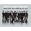 SE7EN SOMEBODY ELSE - 2012 YG Family Concert in Japan ver.