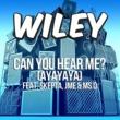 Wiley Can You Hear Me? (ayayaya) (ft. Skepta, JME & Ms D)