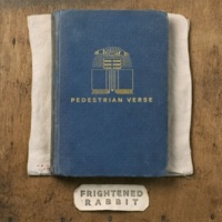 Frightened Rabbit The Woodpile