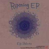 Eiji Shibata Discovered Instinct