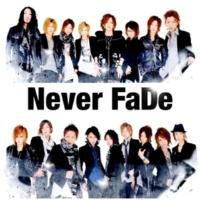 Never FaDe 約束の指輪