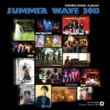 VA SUMMER WAVE 2013