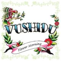 VUSHIDU ital island