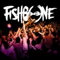 Fishbone Everyday Sunshine (Live)
