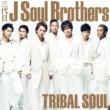 三代目 J Soul Brothers FIGHTERS