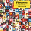 CASIOPEA Flowers