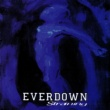 Everdown Straining