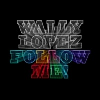 Wally Lopez You Can't Stop The Beat (feat. Jamie Scott)